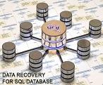 بازیابی اطلاعات  database